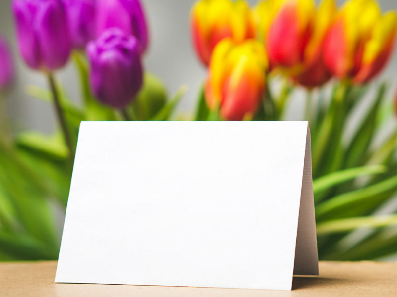 blank card against a backdrop of tulips