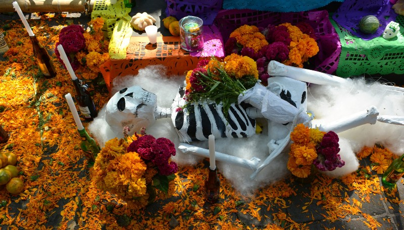 Photo of large model skeleton lying on a bed of marigolds and decorated with candles and food