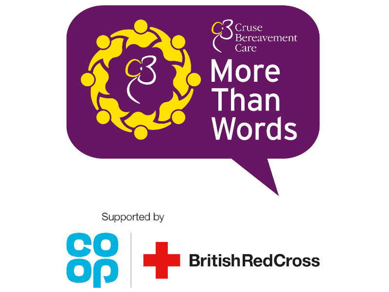 More Than Words bereavement social groups campaign logo