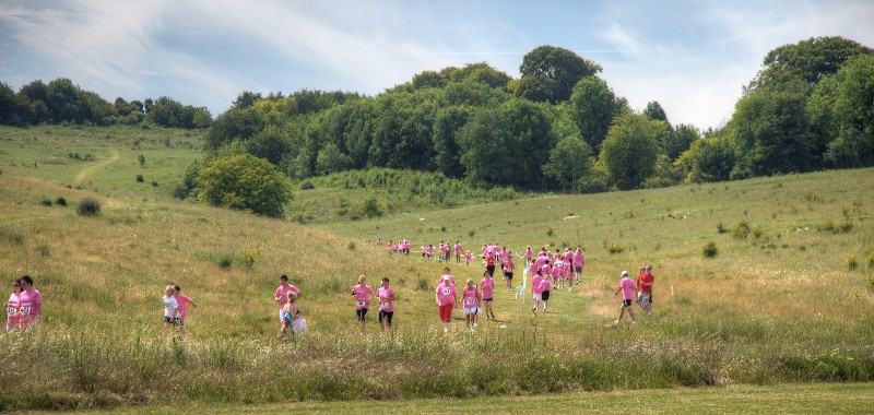 wide shot of people in pink t-shirts running in a race