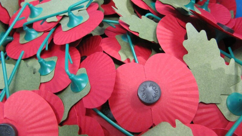 close-up of a pile of remembrance poppies