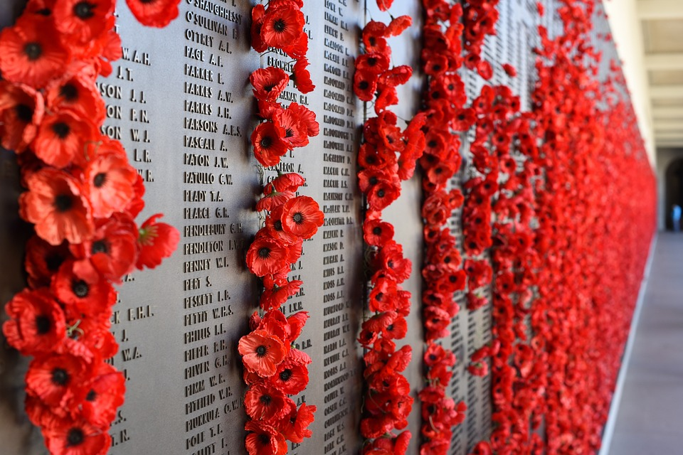 poppies on a wall of remembrance