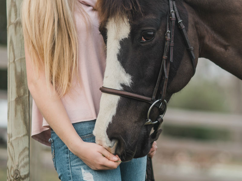 alternative grief therapy - equine therapy