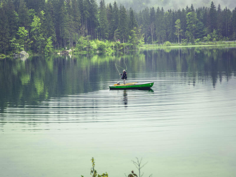 Man fishing off a boat in a lake surrounded by evergreens