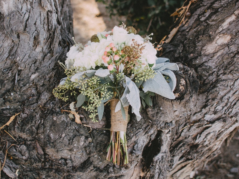 A bouquet of flowers and blue gum leaves in the fork of an old tree