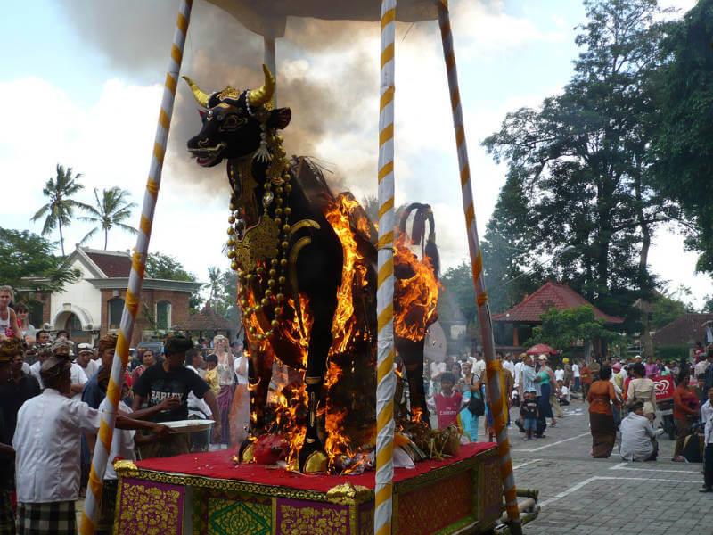 Lembu on fire