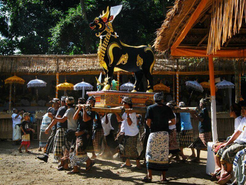 Pallbearers carrying a gold and black coffin shaped like an ox