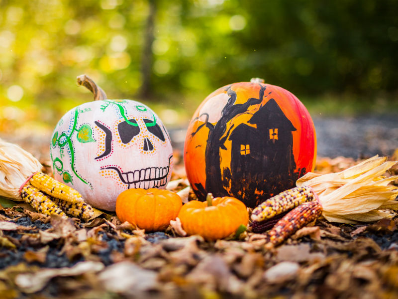 day of the dead events 2018 pumpkins