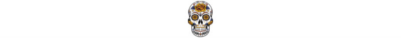 Day of the Dead skull motif