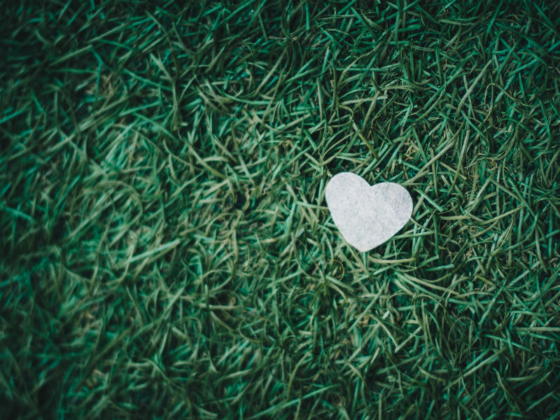 Bereaved dads Father's Day- heart on grass