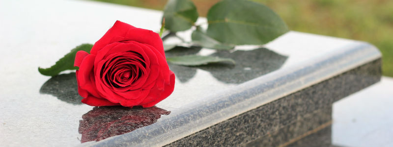 A rose on a tombstone