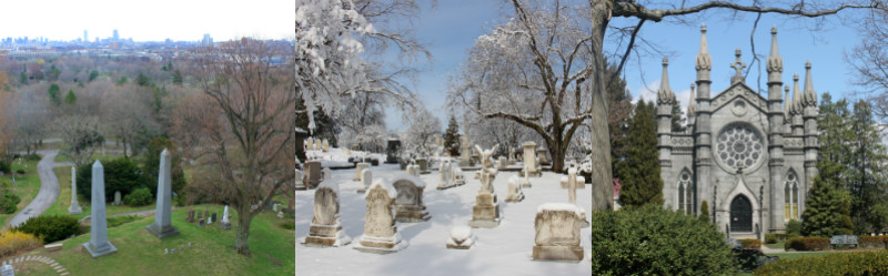 Three images of Mount Auburn's famous cemetery