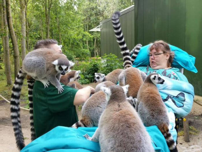 Woman visiting lemurs at a zoo with support from the Ambulance Wish Foundation