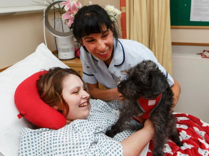 Young girl in a hospice playing with a therapy dog as part of her palliative care treatment