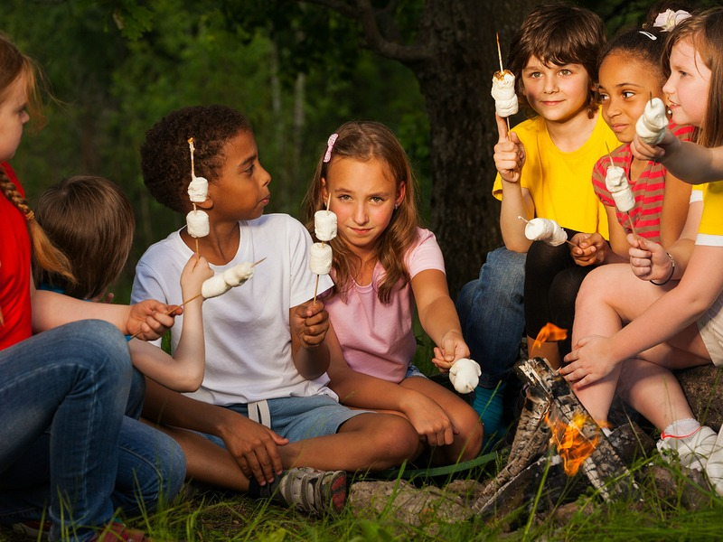 A group of children toast s'mores over a campfire