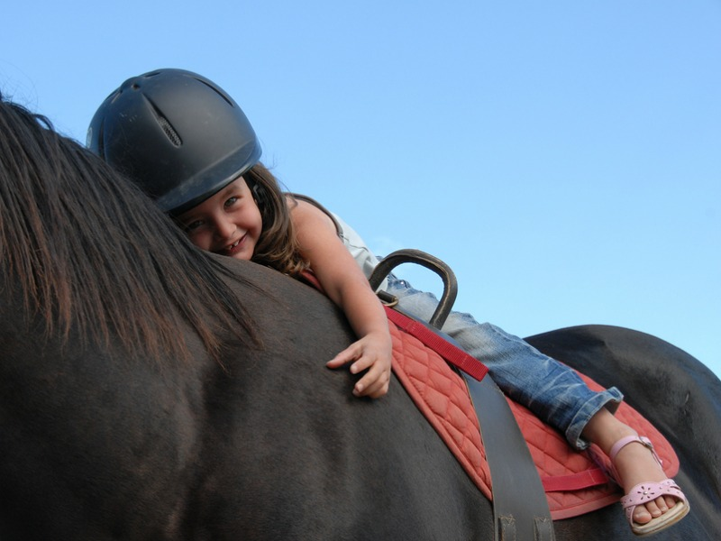 A smiling little girl learning to ride a horse