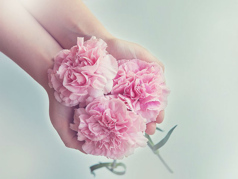 pink carnations for funerals