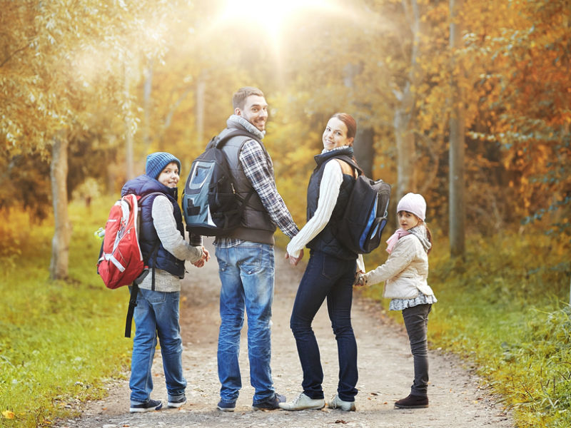 A family walking in woodlands