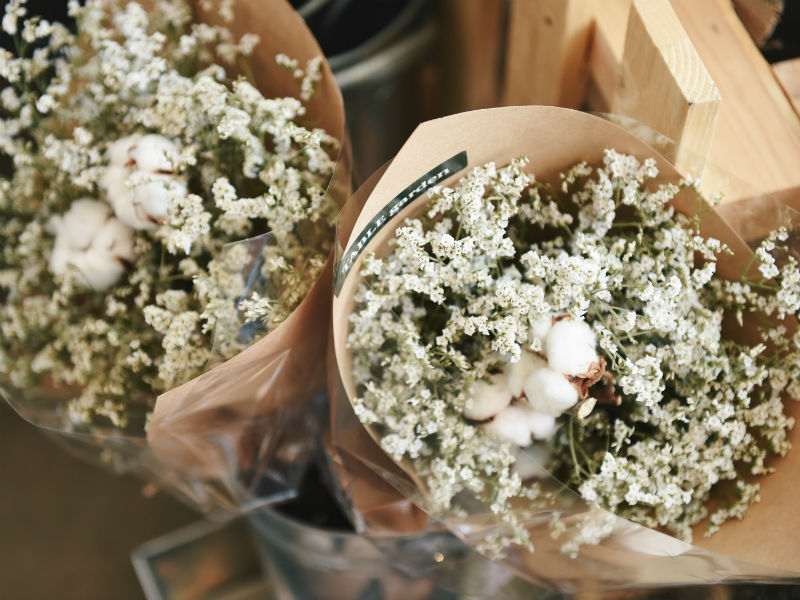 popular funeral flowers gypsophila