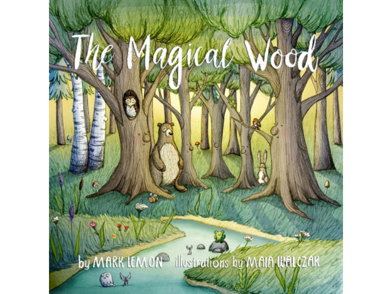 The Magical Wood - a children's book about grief