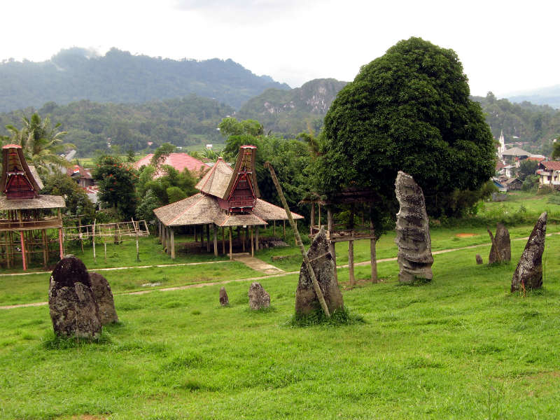 Megaliths at the edge of a Torajan village