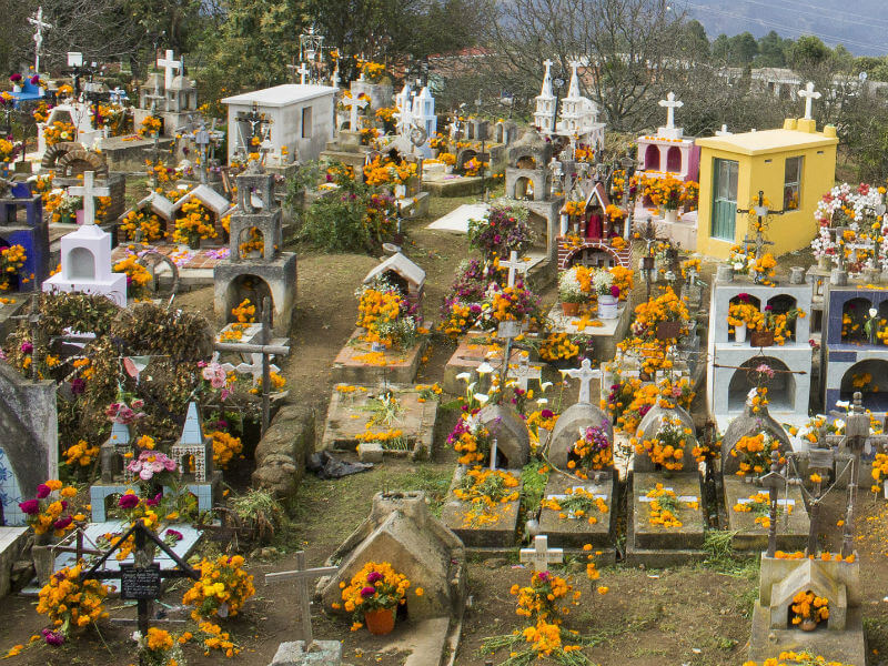 View of a Mexican graveyard, with every grave covered in bright orange marigold flowers